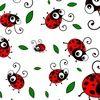 ladybug_thrift